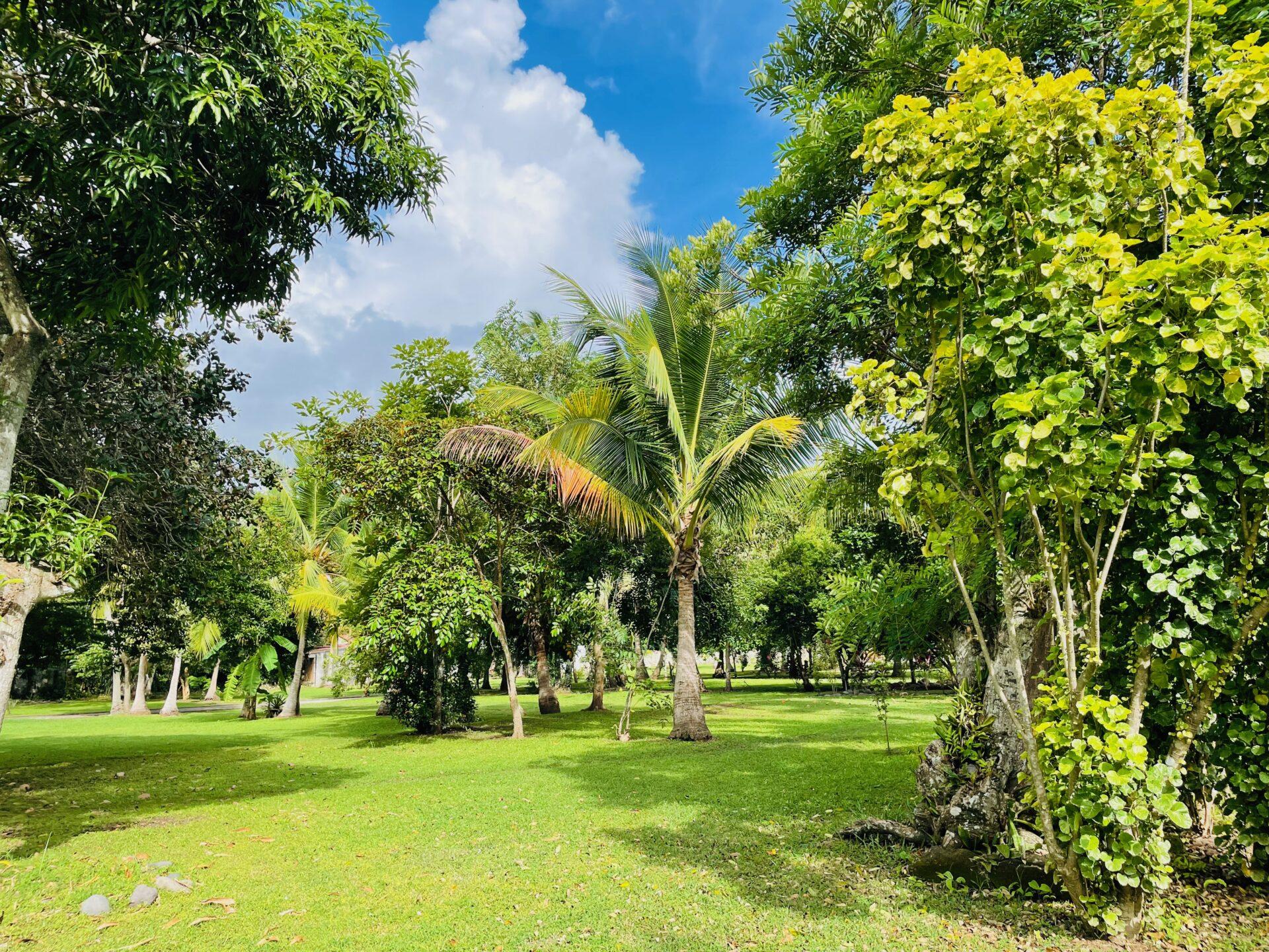 boca-barranca-grounds